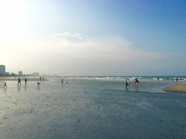 スワンソンビーチ