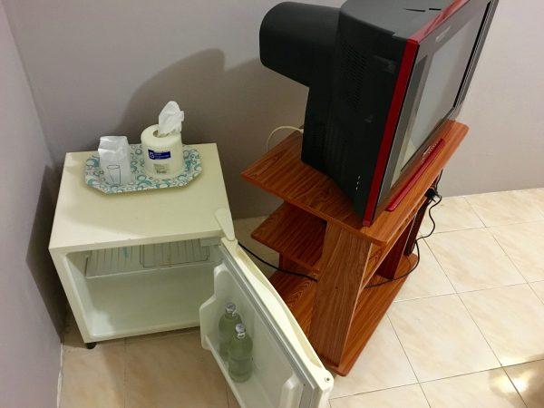 グランドパレンツ ホーム テレビと冷蔵庫