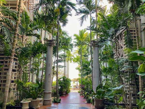 パタヤ モーダス ビーチフロント リゾート(Pattaya Modus Beachfront Resort)の椰子の木