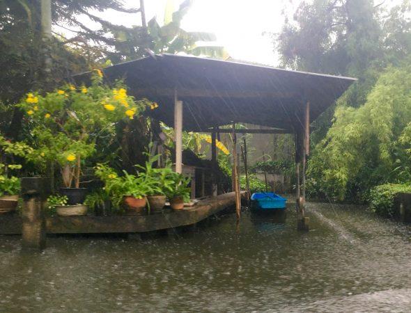 個人宅用の手漕ぎボート