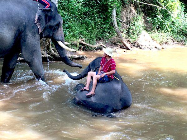 象の水浴び4