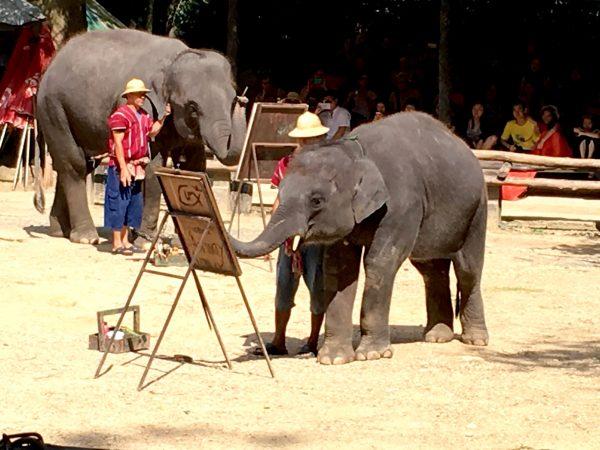 象のお絵描き