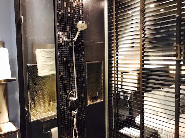 デラックスルーム (Deluxe Room)のシャワールーム2
