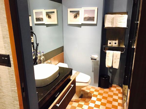 デラックスルーム (Deluxe Room)のシャワールーム1