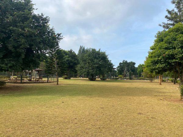 バラタ カオヤイ リゾート(Valata Khaoyai Resort)の敷地2