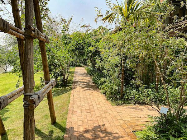 ラヤヘリテージ チェンマイ(Raya Heritage Chiangmai)の中庭2