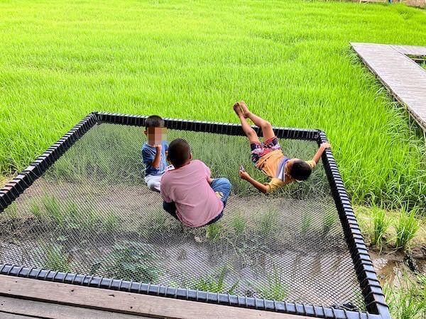 ドゥーナーカフェ(DO-NA Cafe)のハンモックで遊ぶ子供達