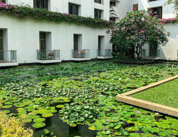ザ スコータイ バンコク(The Sukhothai Bangkok)の中庭にある蓮池1