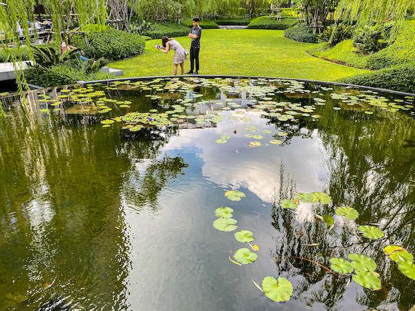 キンプトン マーライ バンコク(Kimpton Maa-Lai Bangkok)1階のガーデンにある蓮池