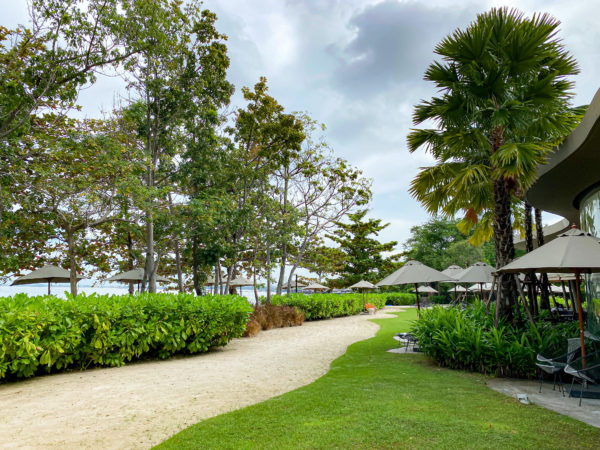 ナバーナネイチャーエスケープ(Navana Nature Escape)の自然あふれる中庭
