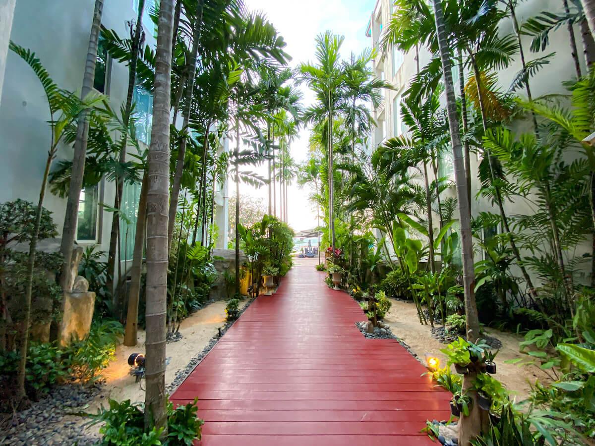 パタヤ モーダス ビーチフロント リゾート(Pattaya Modus Beachfront Resort)の敷地内に並ぶ植物2
