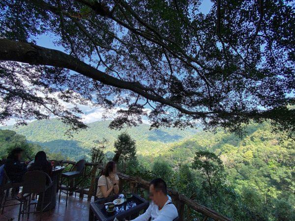 ザ・ジャイアント・チェンマイ(The Giant Chiangmai Thailand)から見える景色