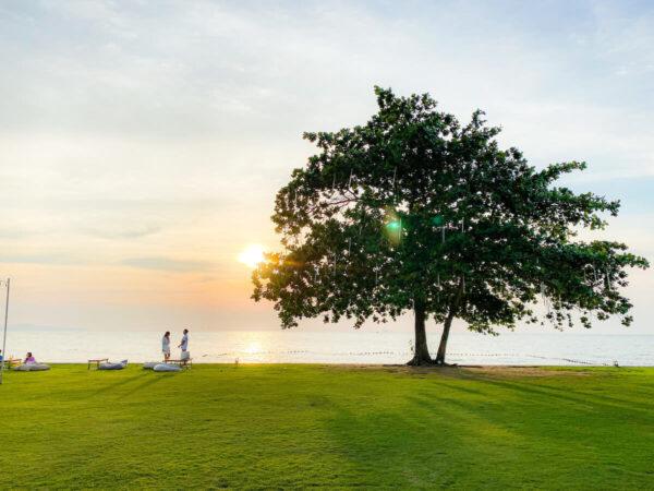 アナアナン リゾート アンド ヴィラズ パタヤ(Ana Anan Resort and Villas Pattaya)のプライベートガーデン