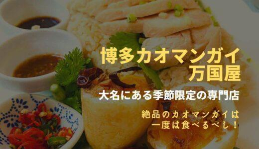 博多カオマンガイ万国屋の食レポ。季節限定で味わえる絶品のカオマンガイ専門店は一度は行くべし!