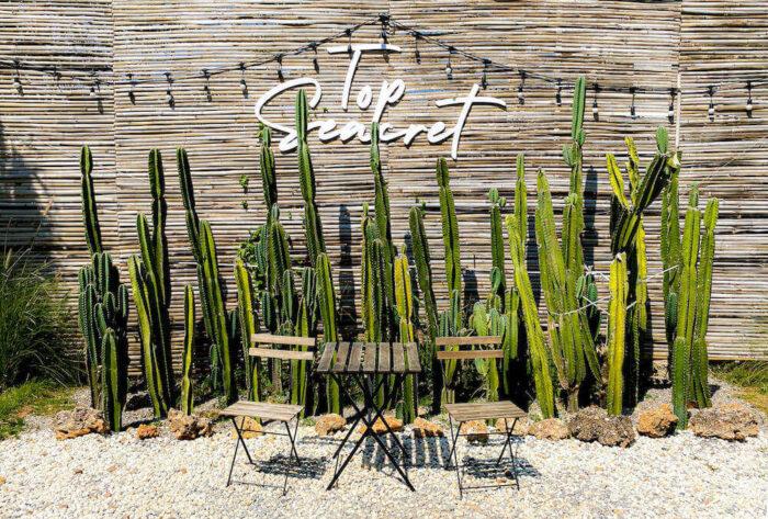 トップ・シークレット・ビーチ・カフェ(Top Seacret Beach Cafe)内のオブジェ3
