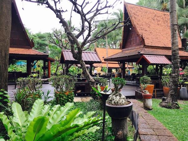朝の中庭2