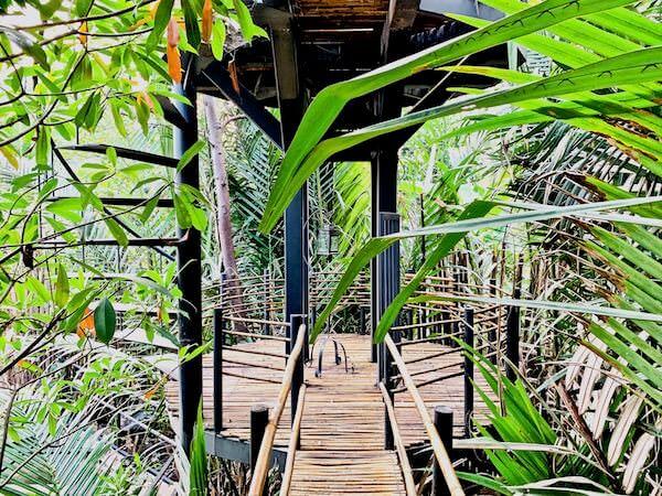 バンコク ツリー ハウス(Bangkok Tree House)のテラス2