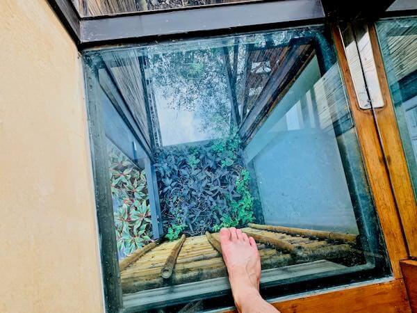 バンコク ツリー ハウス(Bangkok Tree House)客室のガラス張りの床