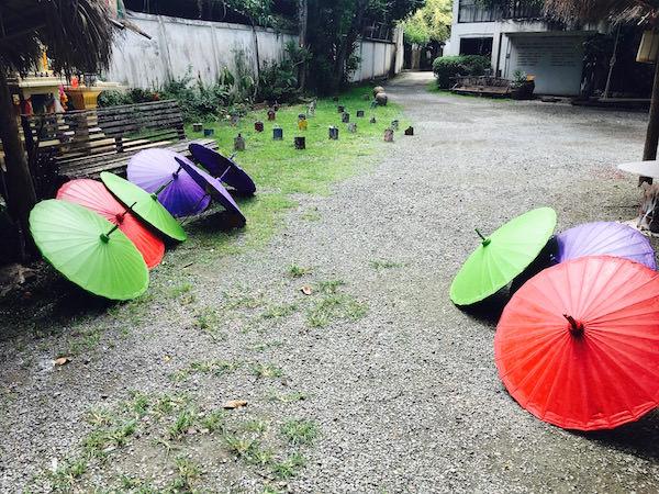 乾燥中の傘