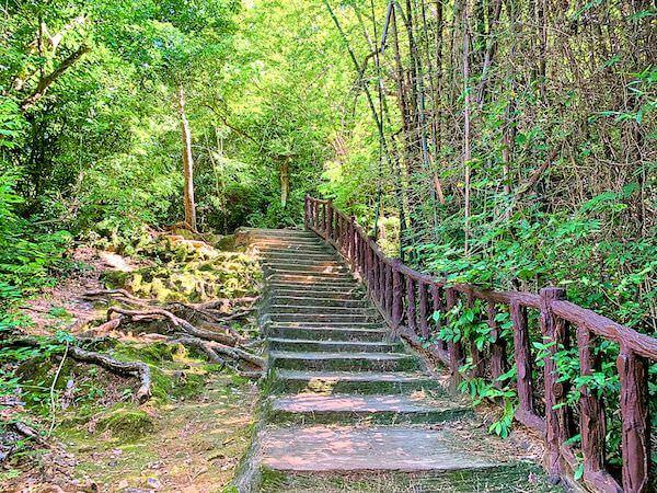 エラワン国立公園内の階段