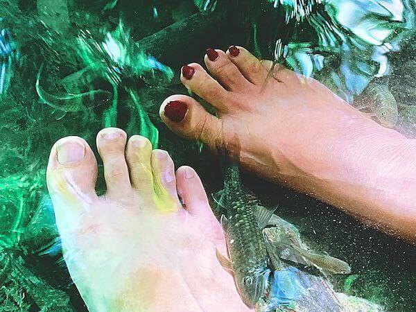 エラワンの滝にいる天然のドクターフィッシュ