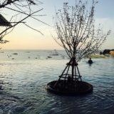 ヒルトン パタヤ (Hilton Pattaya)のプール2