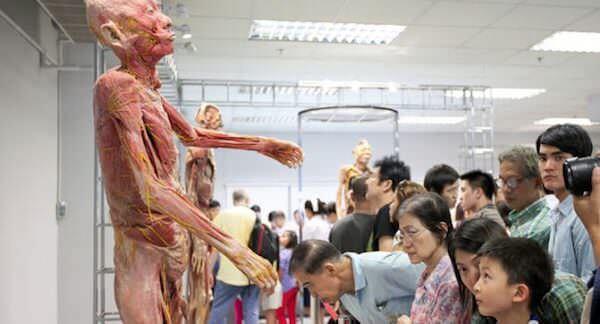サイアム人体博物館