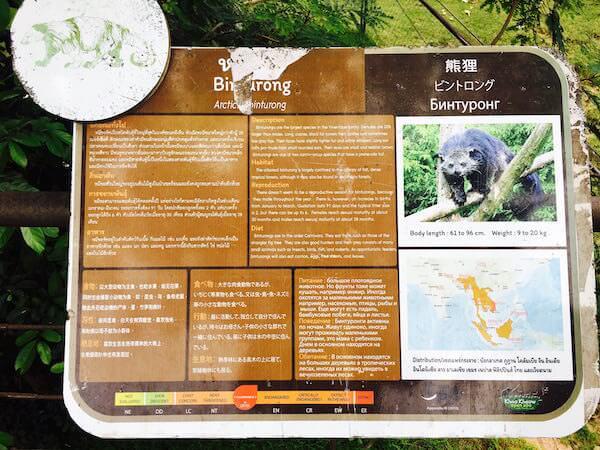 カオキアオ動物園 展示動物の説明書き