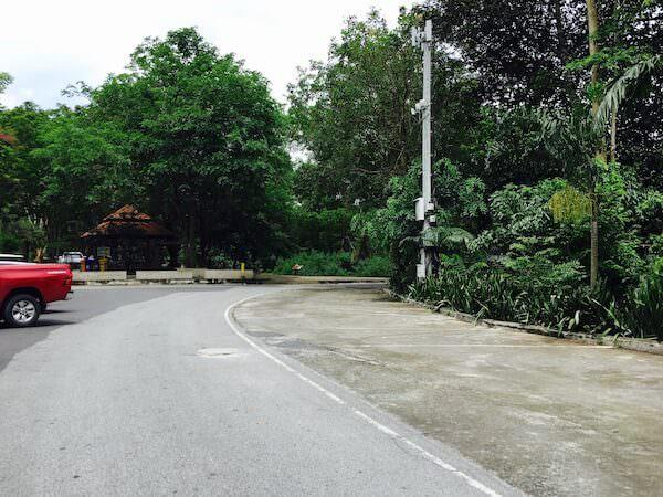 カオキアオ動物園内の道路