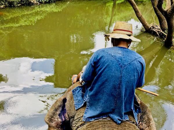 カオヤイの象乗りトレッキング3