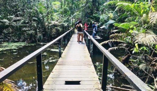 カオヤイのおすすめ観光地を全て紹介。国立公園だけじゃないカオヤイの魅力。