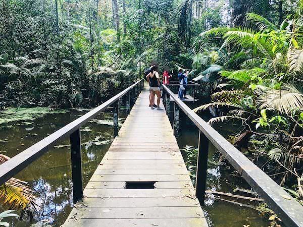 カオヤイ国立公園のゴーンゲーン自然トレッキングコース1