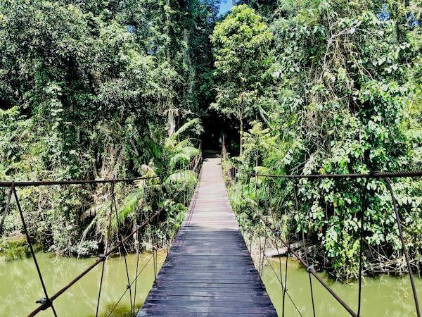 ゴーンゲーン自然トレッキングコース 入り口の吊り橋