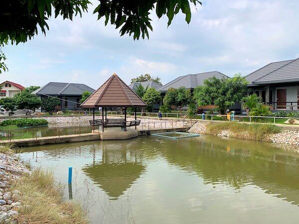 ミッドタウン スコータイ(Midtown Sukhothai)の敷地内にある池