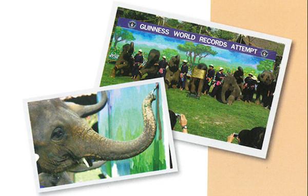 チェンマイの象 ギネス記録