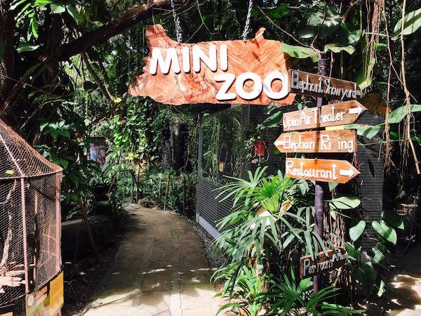 パタヤエレファントビレッジの動物園