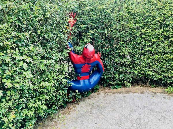 ピートメイズ(Pete maze)のスパイダーマン
