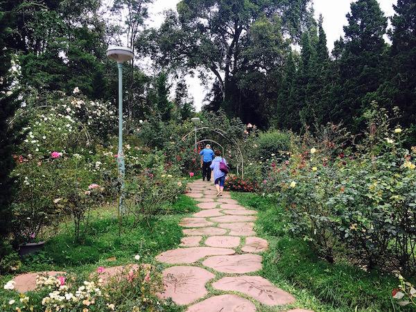 プーピン宮殿の庭園1