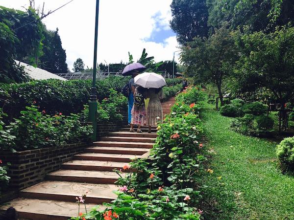 プーピン宮殿の庭園2