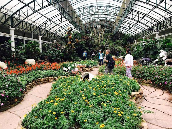プーピン宮殿の庭園3