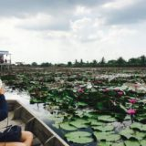 ボートから見た蓮の池