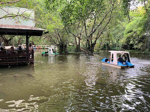 サムプランエレファントグランドアンドズー(サムプラン象園)の園内にある池