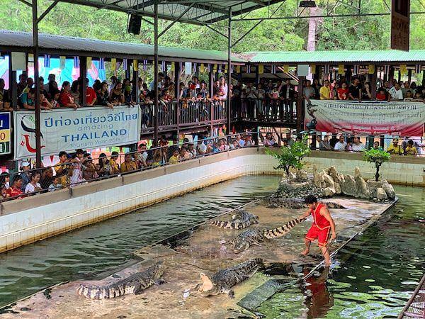 サムプランエレファントグランドアンドズー(サムプラン象園)のクロコダイルショー1