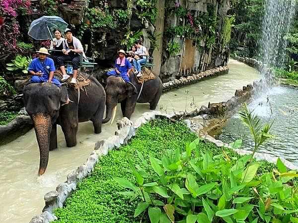 サムプランエレファントグランドアンドズー(サムプラン象園)での象乗りトッレキング2