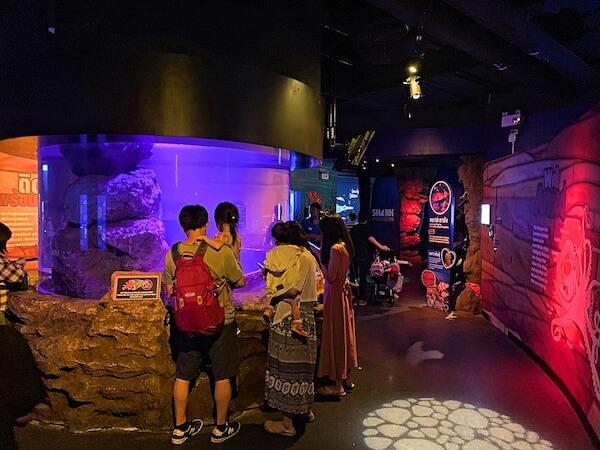 シーライフオーシャンワールドバンコク(Sea Life Ocean World Bangkok)の内部1