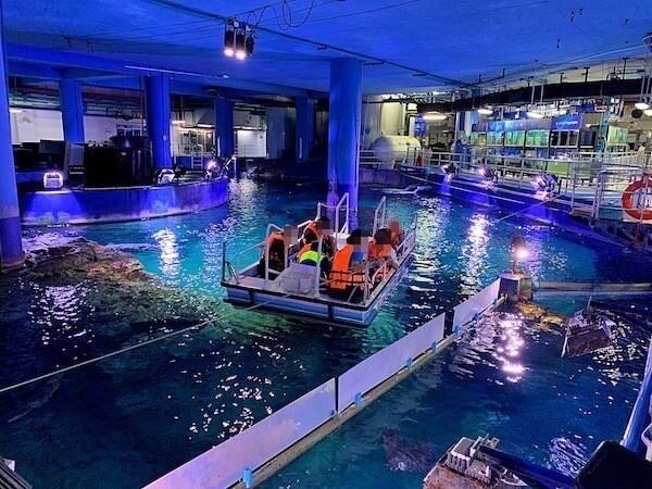 シーライフオーシャンワールドバンコク(Sea Life Ocean World Bangkok)のグラスボトムボートトリップ1