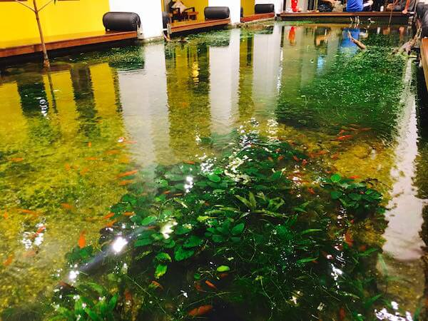 シャンハイ マンション バンコク (Shanghai Mansion Bangkok) 吹き抜けロビーの池