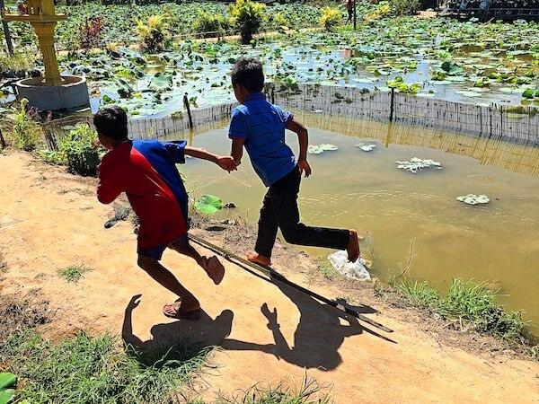 蓮畑を走り回るカンボジア人の子供達