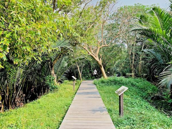 シーナコンクエンカン公園のニッパヤシエリア