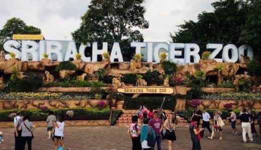 シラチャータイガーズー。バンコクやパタヤから日帰りで観光できる虎のテーマパーク。
